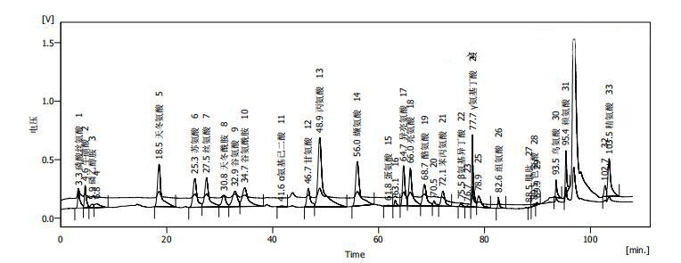 氨基酸实验流程